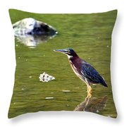 The Green Heron Throw Pillow