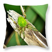 The Green Spider Throw Pillow