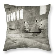 The Grey Mares Throw Pillow