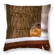 The Grey Squirrel George In Winter Throw Pillow