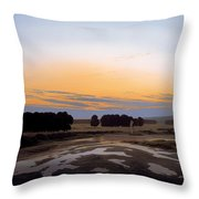 The Grosse Gehege Near Dresden Throw Pillow