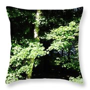 The Grotto Throw Pillow