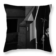 The Guard Throw Pillow