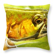 The Hare And The Trout Throw Pillow