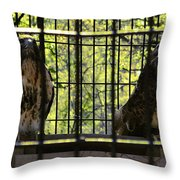 The Hawks From The Series The Imprint Of Man In Nature Throw Pillow