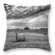 The Hay Bails Throw Pillow