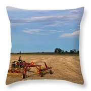 The Hayfield Throw Pillow
