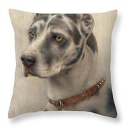The Head Of A Doberman Throw Pillow