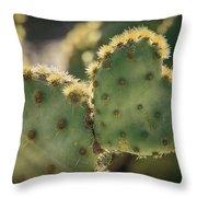 The Heart Of A Cactus  Throw Pillow