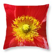 The Heart Of A Red Poppy Throw Pillow