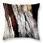 The Heart Of Barkness In Mariposa Grove In Yosemite National Park-california  Throw Pillow