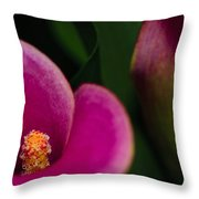 The Heart Of The Lily Throw Pillow by Christi Kraft