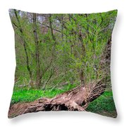 The Hedge Witch Throw Pillow