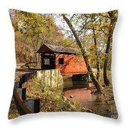 The Henry Bridge 1 Throw Pillow
