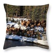 The Herd Throw Pillow