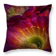 The Hidden Treasures  Throw Pillow
