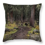 The High Forest Throw Pillow by Eric Glaser
