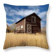 The High Grass Barn Throw Pillow