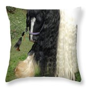 The Hitcher Throw Pillow by Fran J Scott