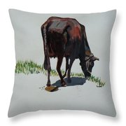 The Holy Cow And Dung. Throw Pillow