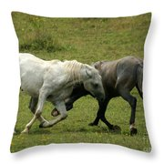 The Horse Ballet Throw Pillow