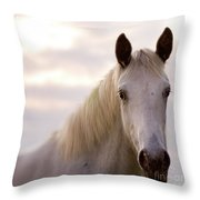 The Horse In The Setting Sun Throw Pillow