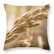 The Hot Gold Hush Of Noon Throw Pillow