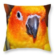 The Hotel Guest - Boardwalk Plaza Hotel - Rehoboth Beach Delaware Throw Pillow