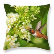 The Hummer And The Butterfly Bush Throw Pillow