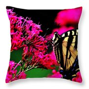 The Hungry Butterfly Throw Pillow