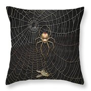 The Hunter And Its Pray - A Gold Fly Caught By A Gold Spider Throw Pillow