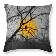The Hunters Moon And The Barred Owl Throw Pillow