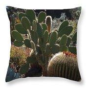 The Huntington Desert Garden Throw Pillow by Rona Black