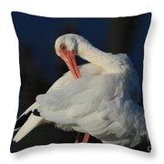 The Ibis Preen Throw Pillow