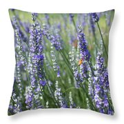 The Importance Of Bees Throw Pillow