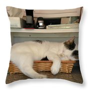 The In Box Is Full - At Good Earth Market - Clarkville Delaware Throw Pillow