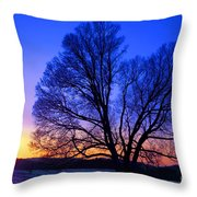 The Incomparable Patience And Fidelity Throw Pillow