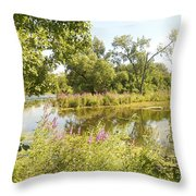 The Indiana Wetlands 2 Throw Pillow