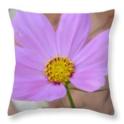 The Inner Side Throw Pillow