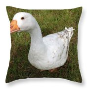 The Inquisitive Goose Throw Pillow