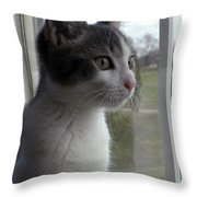 The Inquisitive Kitty Jackson Throw Pillow