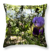 The Iris And St Francis Throw Pillow