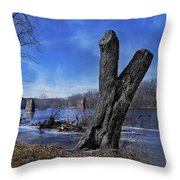 The James River One Throw Pillow