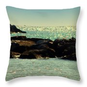The Jetties Throw Pillow