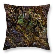 The Jewel Throw Pillow