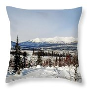 The John River Valley Throw Pillow