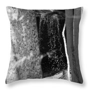 The Journey Begins B W Throw Pillow