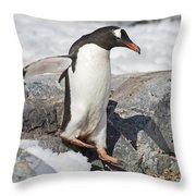 The Jumper.. Throw Pillow