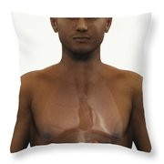 The Kidneys Throw Pillow
