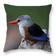 The King Of Fishing... Throw Pillow